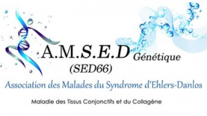 logo_amsed